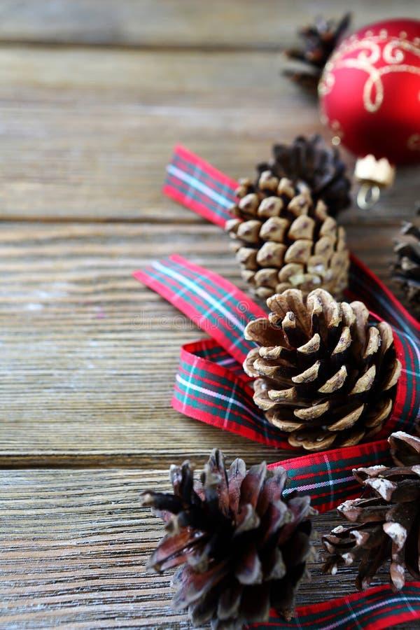 Pigna asciutta di Natale con un nastro fotografie stock libere da diritti