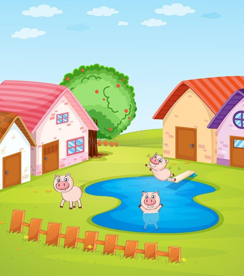 Pigs och hus royaltyfri illustrationer