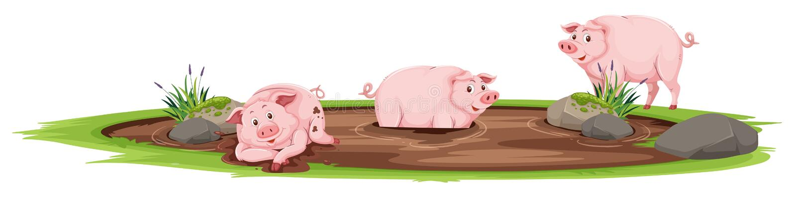 Pigs playing in the mud stock illustration