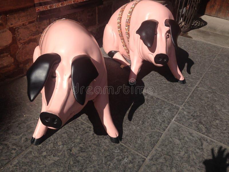 Pigs on Royal Mile Edinburgh stock images