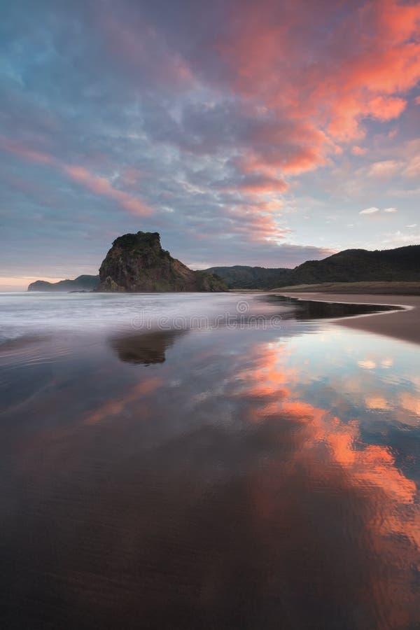 Piha海滩是奥克兰大区的西部海岸的沿海解决在新西兰 这是一个最普遍的海滩 库存图片