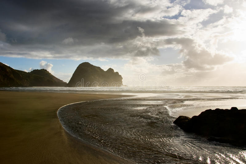 Piha beach stock photography