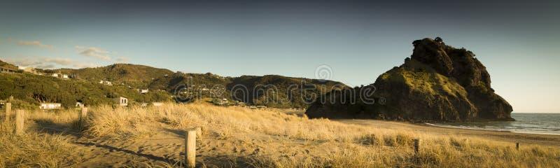 Download Piha beach stock image. Image of coast, dunes, auckland - 26605405