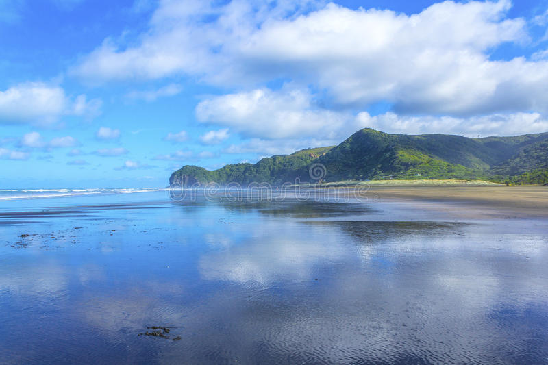 Piha Beach Auckland New Zealand. Low Tide Time at Piha Beach Auckland New Zealand stock photos