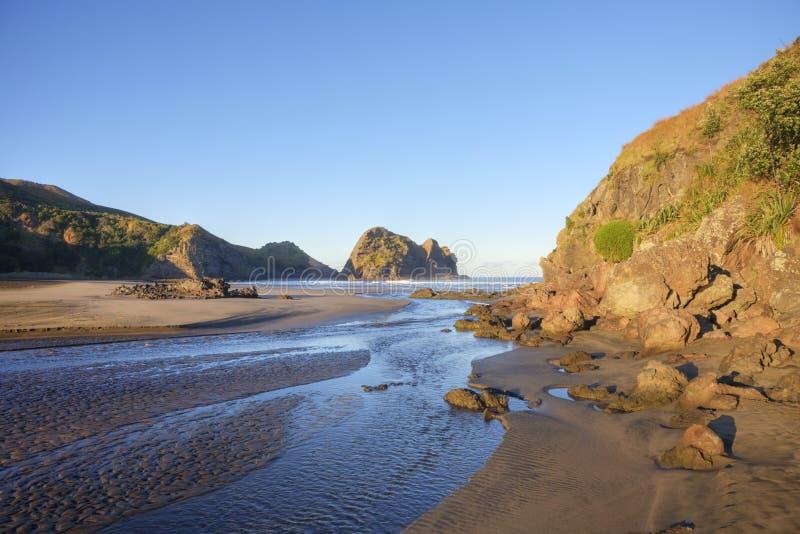 Piha Beach Auckland New Zealand royalty free stock photo