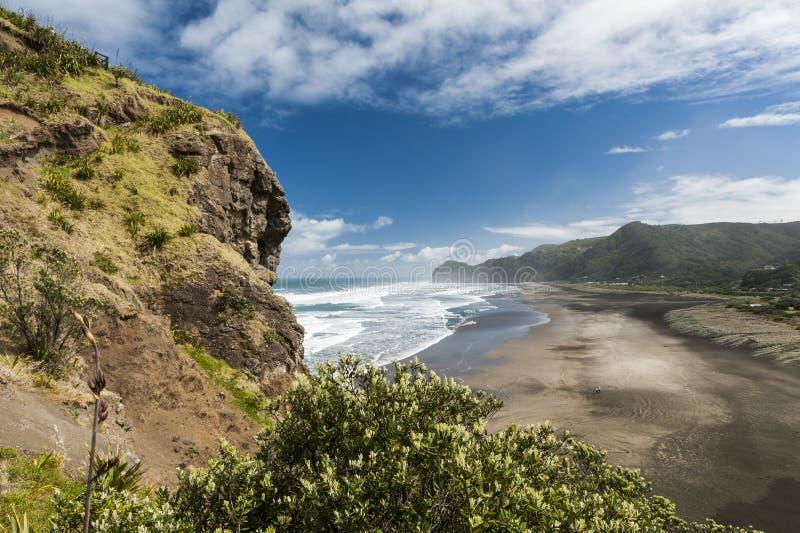 Piha beach. Beautiful Piha beach near Auckland seen from the mighty Lion Rock, New Zealand royalty free stock photo