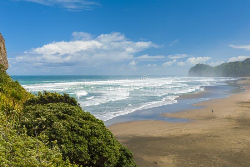 Piha beach. Beautiful Piha beach near Auckland seen from the mighty Lion Rock, New Zealand royalty free stock photography