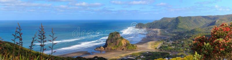 Piha Beach and Lion Rock aerial panorama. Auckland Region, New Zealand stock photo