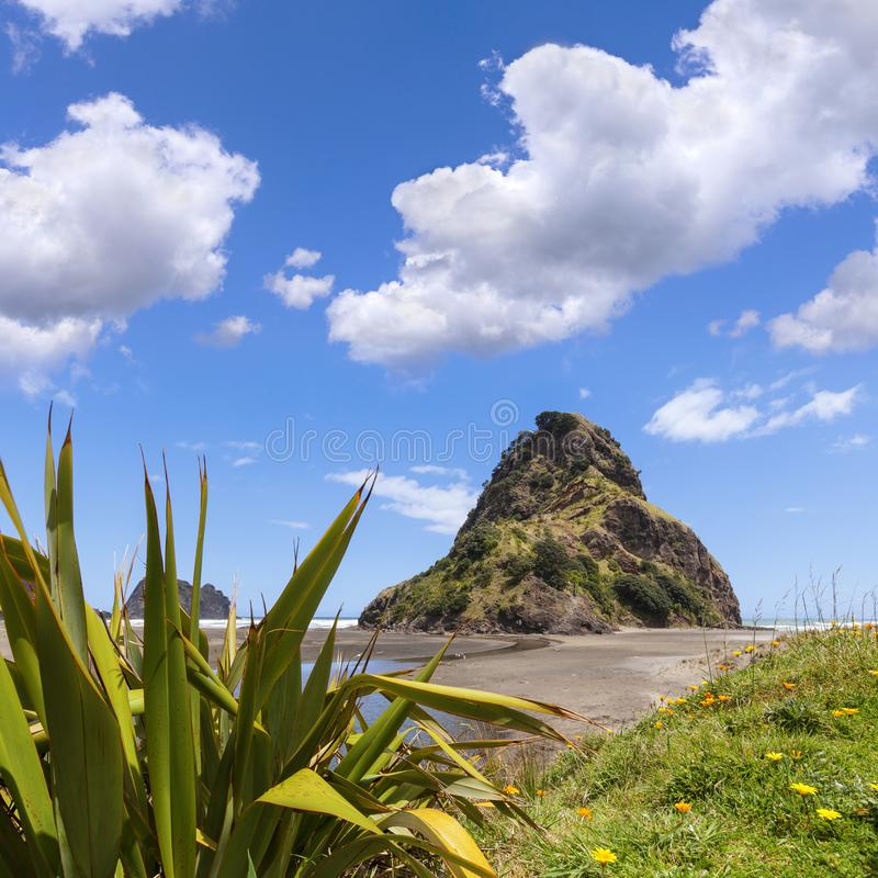 Piha Beach, New Zealand. Piha beach with Lion Rock, Auckland Region, New Zealand stock images