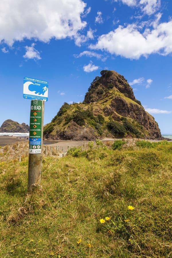 Lion Rock Piha New Zealand stock photos