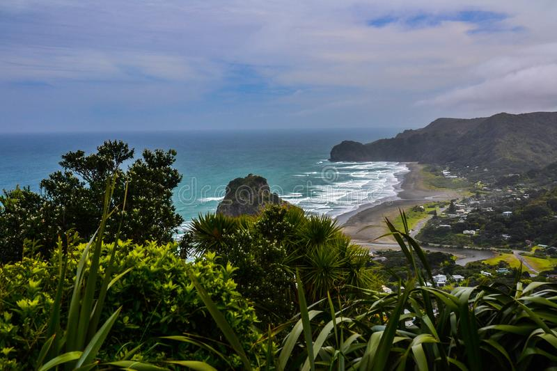 Piha Beach with Lion Rock, New Zealand. New Zeland iconic, famous beaches concept. Panoramic scenic landscape view of surfers popular Piha Beach and Lion Rock in royalty free stock photos