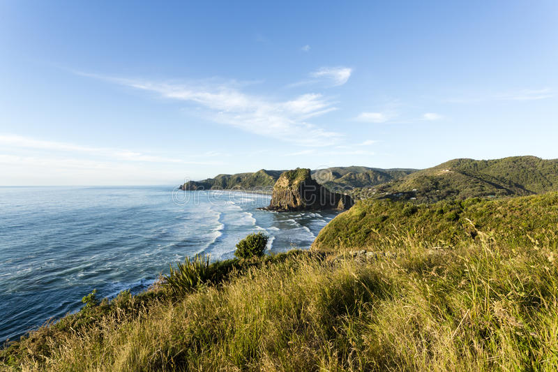 Piha Beach, New Zealand. New Zealand's most famous west coast holiday beach Piha in late afternoon light stock images