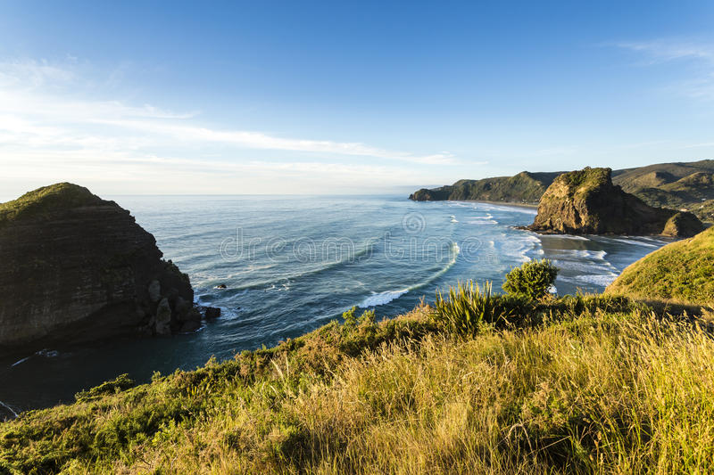 Piha Beach, New Zealand. New Zealand's most famous west coast holiday beach Piha in late afternoon light stock photo