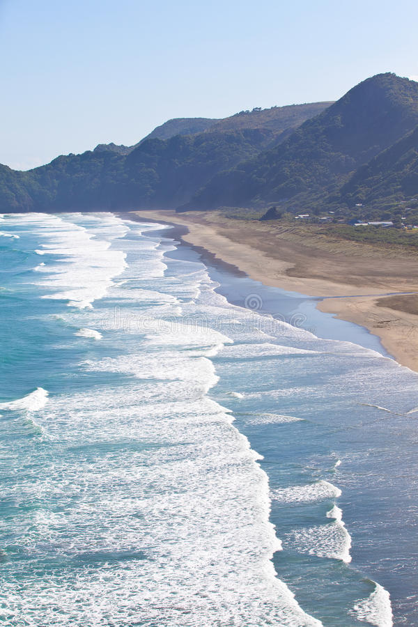 Piha beach in new zealand. View from lion rock at the piha beach in new zealand stock images