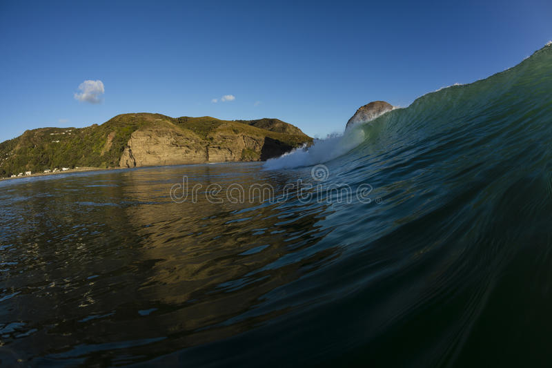 Piha Beach. A perfect wave breaking in the water at Piha Beach on Auckland's Westcoast, New Zealand stock photos