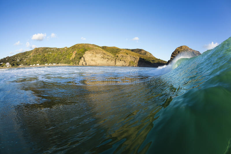 Piha Beach. A perfect wave breaking in the water at Piha Beach on Auckland's Westcoast, New Zealand royalty free stock image