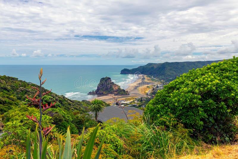 Piha beach view, western coast of Auckland. North island, New Zealand royalty free stock image