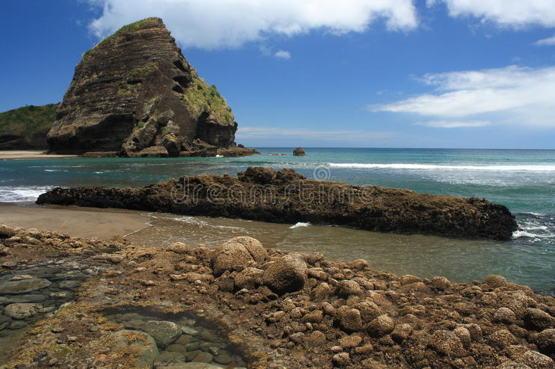 Piha Beach at Waitakere Ranges. In New Zealand stock image