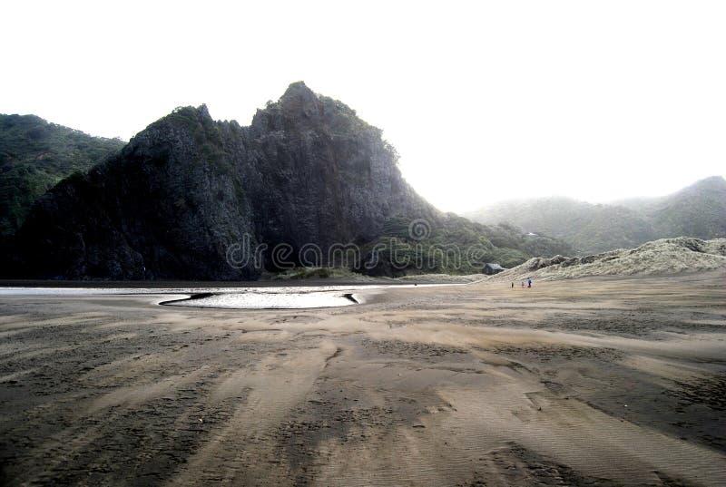 Piha plaża zdjęcie stock