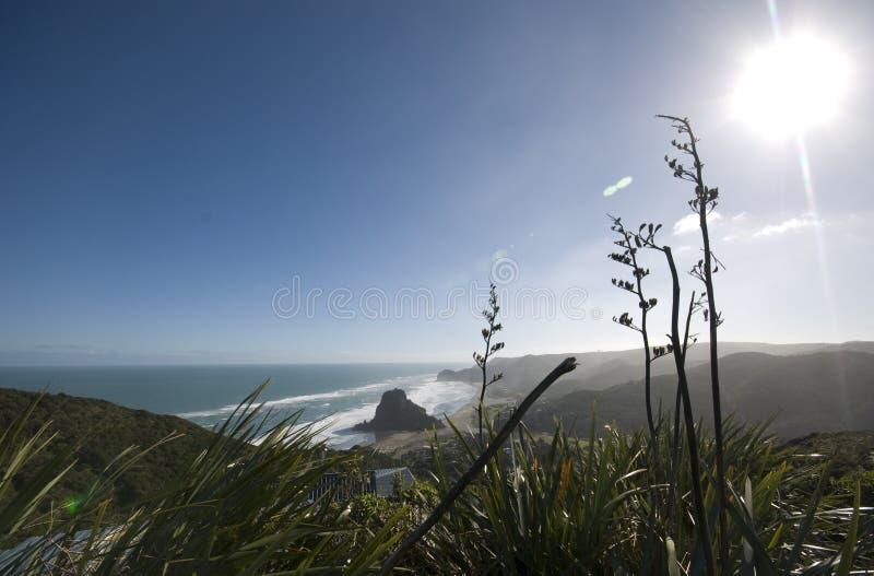 piha plażowy widok obraz royalty free