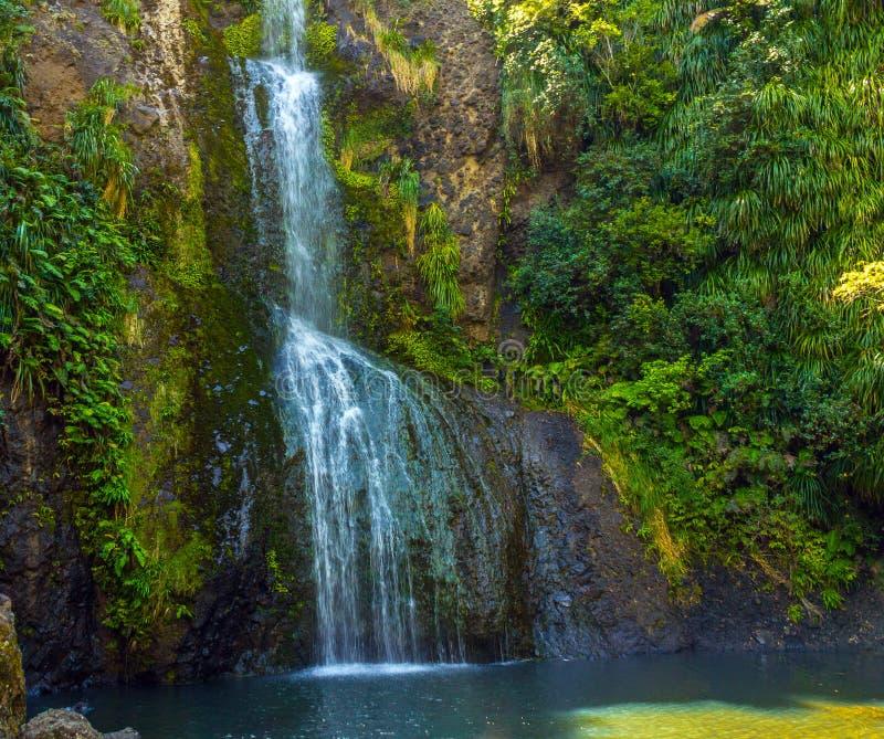 Piha Waterfalls, Kitekite Falls Auckland New Zealand. At the Base of Piha Waterfalls, Kitekite Falls Auckland New Zealand stock photo