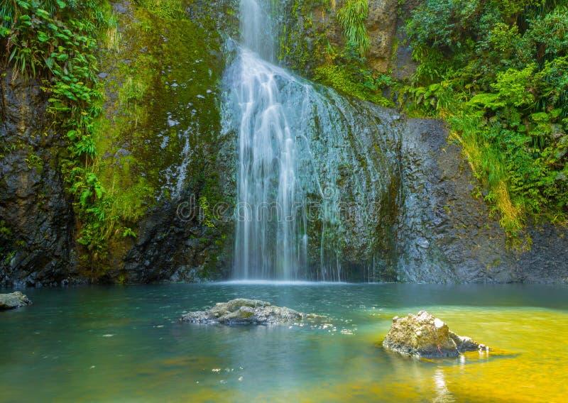 Piha Waterfalls, Kitekite Falls Auckland New Zealand. At the Base of Piha Waterfalls, Kitekite Falls Auckland New Zealand stock image