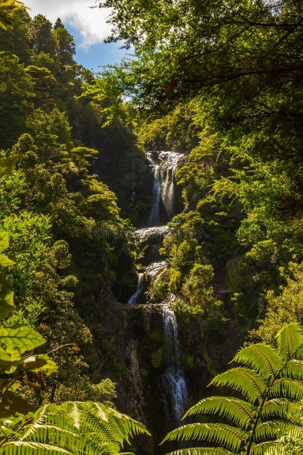 Piha Waterfalls, Kitekite Falls Auckland New Zealand. Beautiful Piha Waterfalls, Kitekite Falls Auckland New Zealand stock images