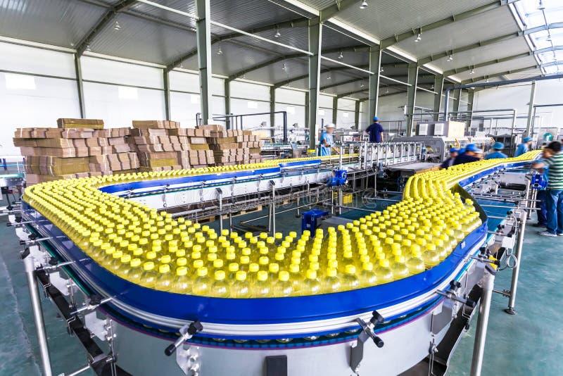 Pije produkci rośliny w Chiny obraz royalty free