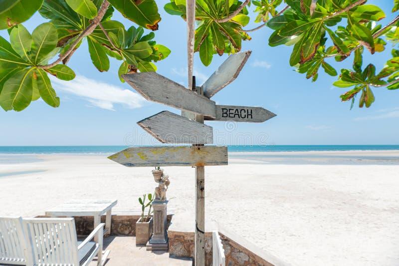 Pijlen houten uithangbord op het strand met groene installatie stock foto's