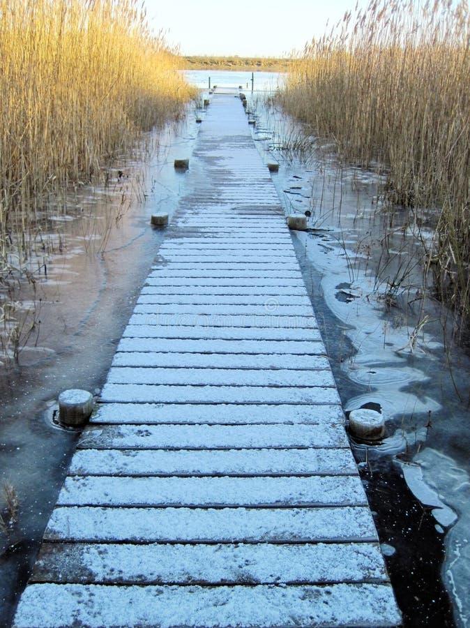 Pijler in rivier litouwen stock foto