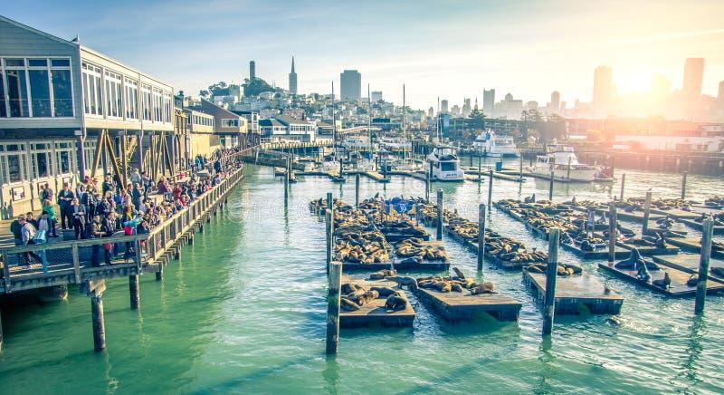 Pijler 39, San Francisco stock foto's