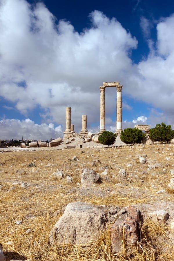 Pijlers van Hercules in Amman Citadel stock afbeeldingen