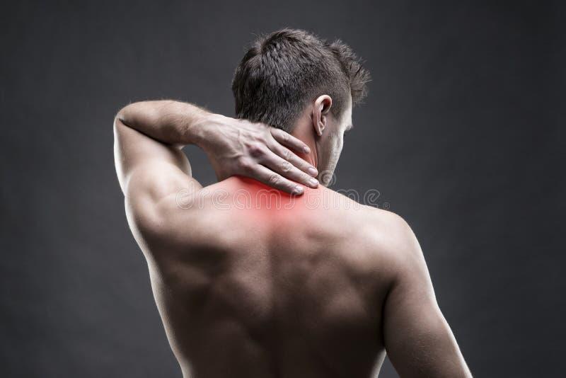 Pijn in de Hals Mens met rugpijn Spier mannelijk lichaam Het knappe bodybuilder stellen op grijze achtergrond royalty-vrije stock foto
