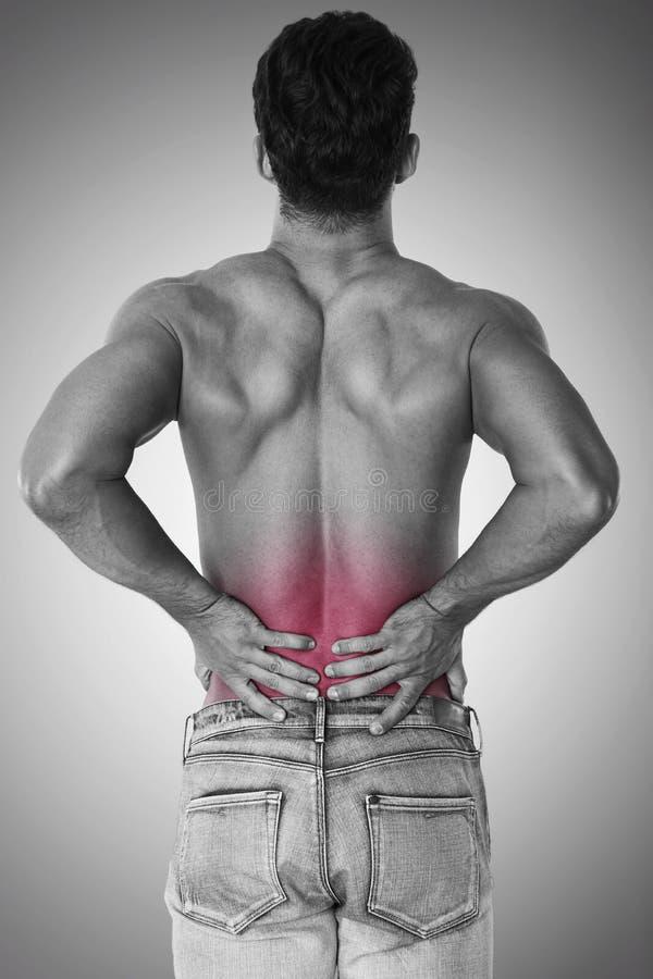 Pijn van rug stock afbeeldingen