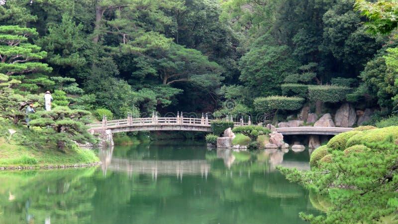 Pijnboomboom in Ritsurin Koen Garden Takamatsu Japan royalty-vrije stock foto's