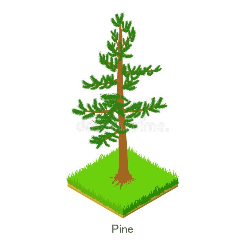 Download Pijnboompictogram, Isometrische Stijl Vector Illustratie - Illustratie bestaande uit struik, gebladerte: 107708097