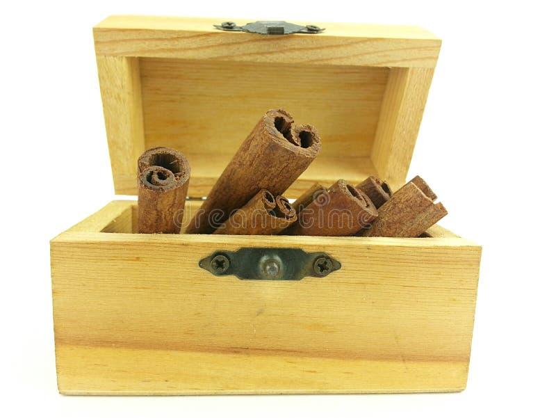 Pijpje kaneel in houten doos royalty-vrije stock afbeelding