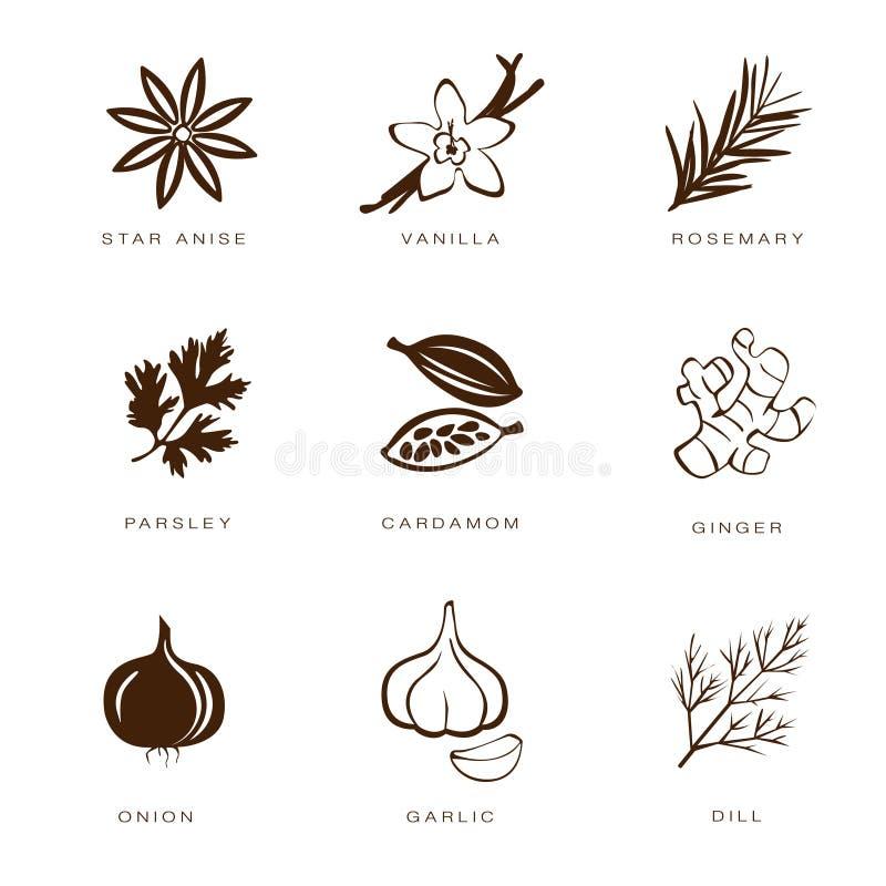 Pikantność, Condiments i ziele Wektorowi, royalty ilustracja