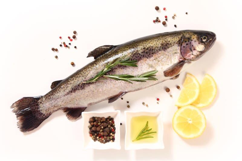 Pikantność i ryba zdjęcie royalty free
