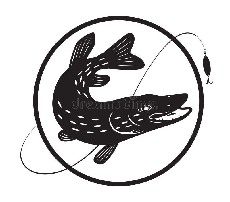 Download Pike stock vector. Illustration of freshwater, predator - 20498769