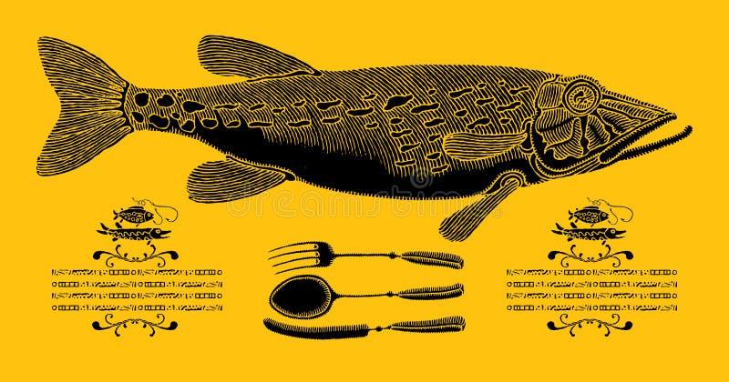 Pike in der Küche lizenzfreie abbildung