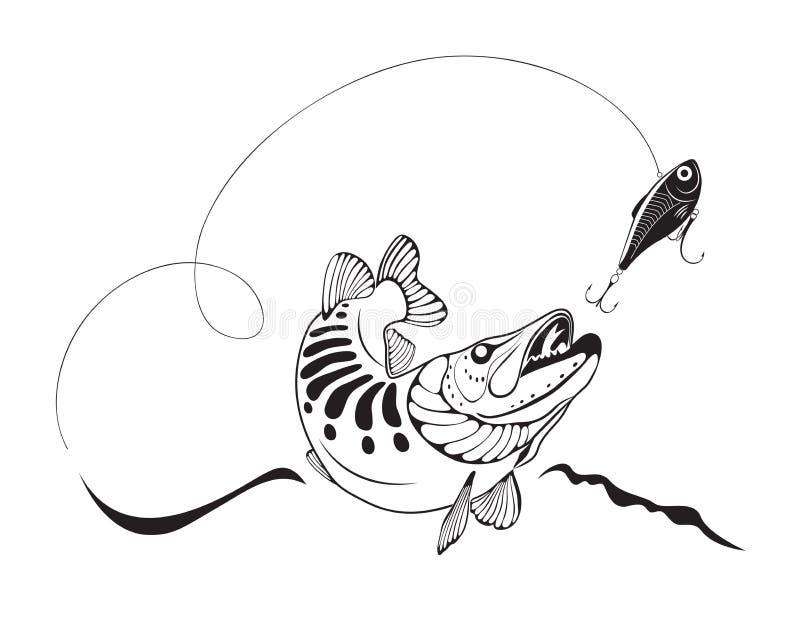 Pike e a pesca seduzem, vector a ilustração ilustração stock