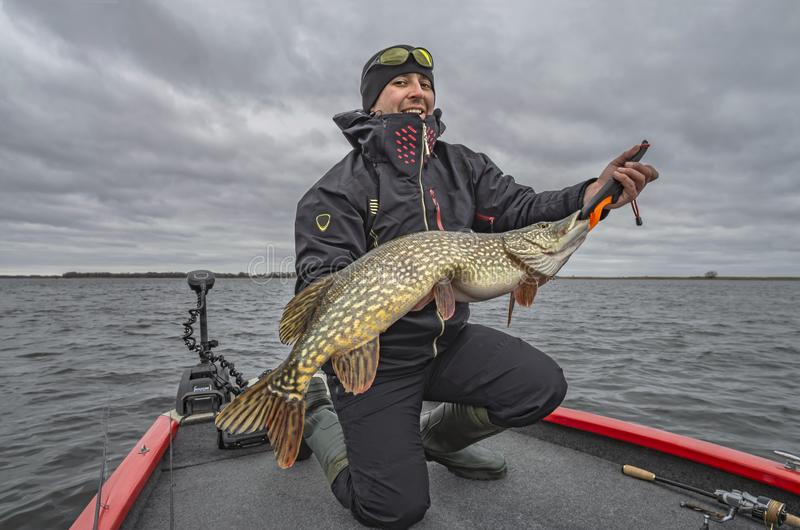 Pike fishing. Happy fisherman with big fish trophy at the boat with tackles royalty free stock images
