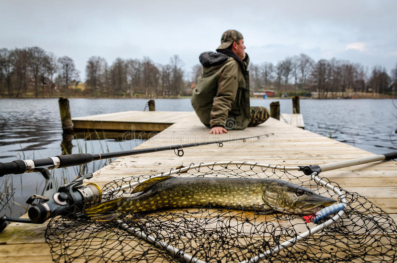 Pike fishing in spring scenery. Pike fishing trophy in Swedish spring scenery stock photography