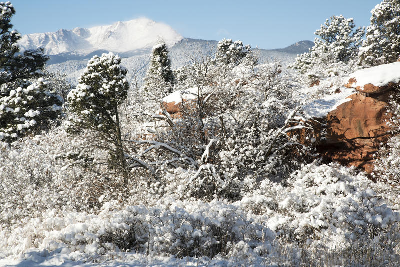 Pike Nursery Near Me: Pike's Peak And The Gardern Of The Gods Stock Image