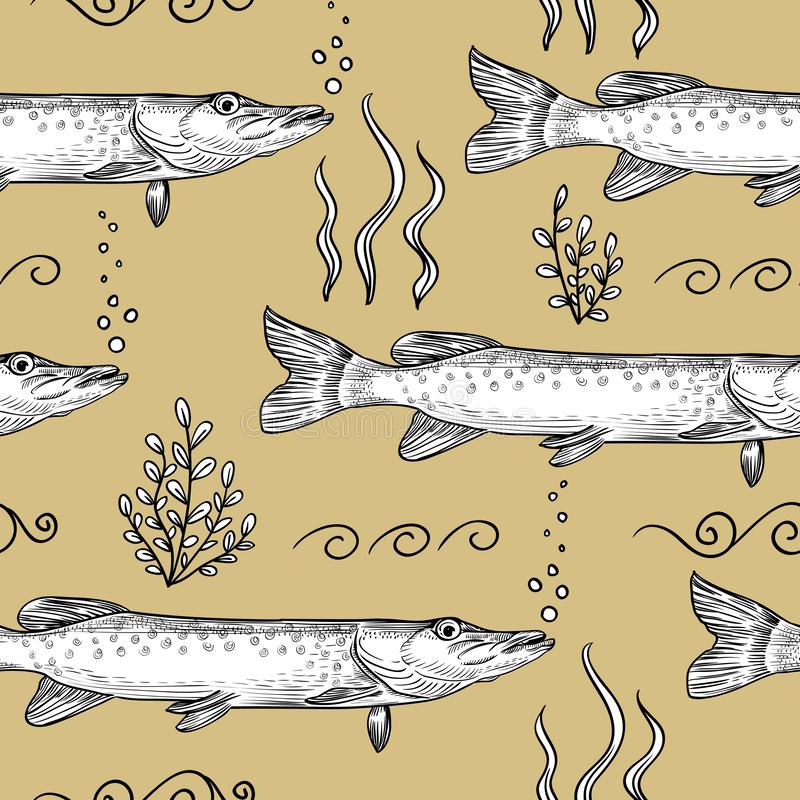 Pike. Seamless pattern of pike royalty free illustration