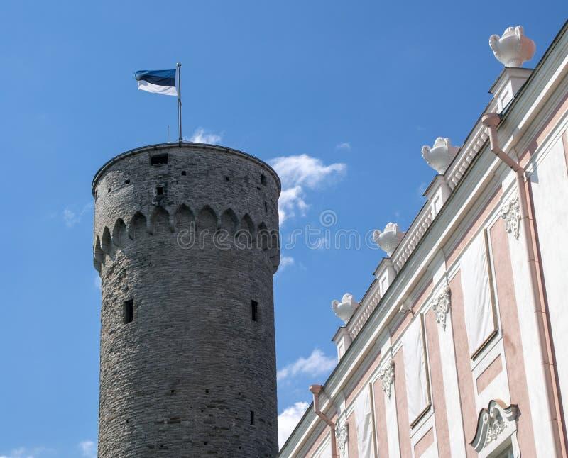Pikk Hermann avec le drapeau de l'Estonie photos stock