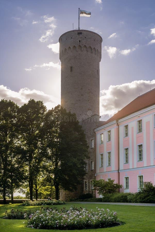 Pikk Hermann o Hermann alto la torre del castello di Toompea, sulla collina di Toompea a Tallinn, la capitale dell'Estonia fotografia stock libera da diritti