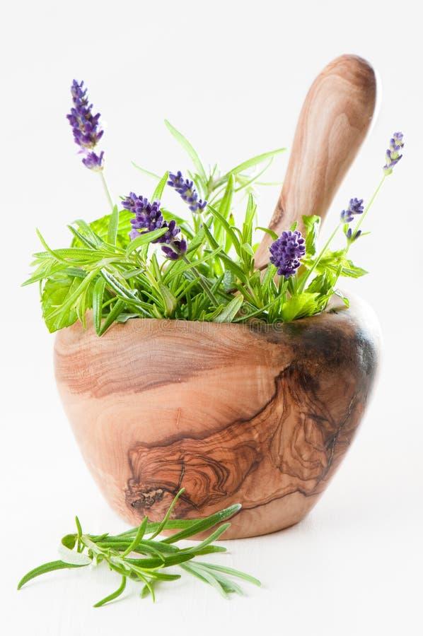 Pilão & almofariz com ervas imagem de stock