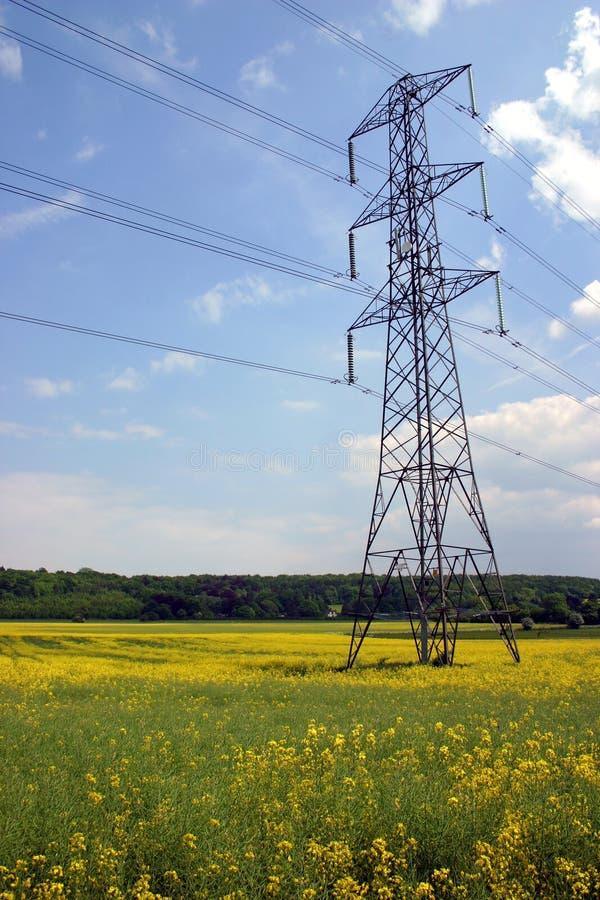 Pilão da eletricidade no campo do Rapeseed imagens de stock royalty free